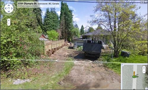 Google Street View - Tree Killer