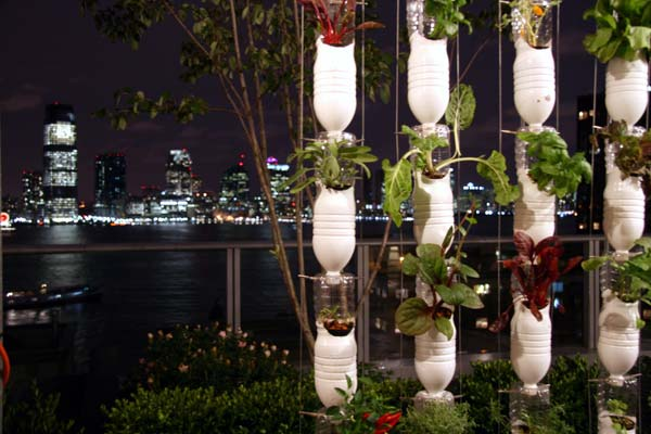 Windowfarms: Social, crowdsourced hydroponics bring fresh food home