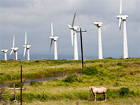 Wind Farm - Flickr user imotov